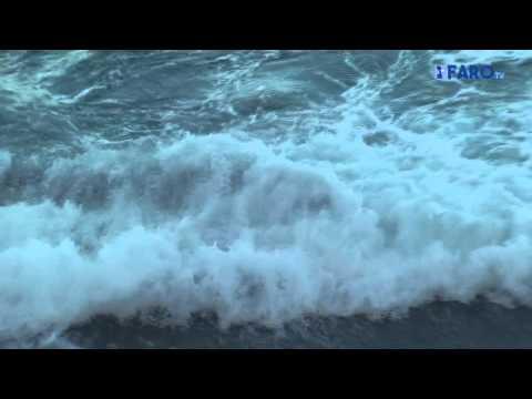 Un ejemplar de ballena adulta varada en la playa de Calamocarro
