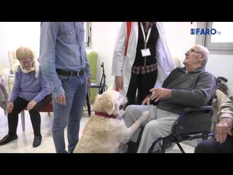 Una perra muy especial para el Centro de Personas Mayores Gerón Ceuta