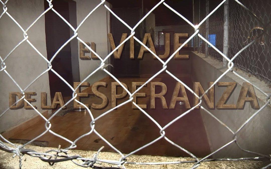 El viaje de la esperanza de 83 animales de Ceuta a Francia