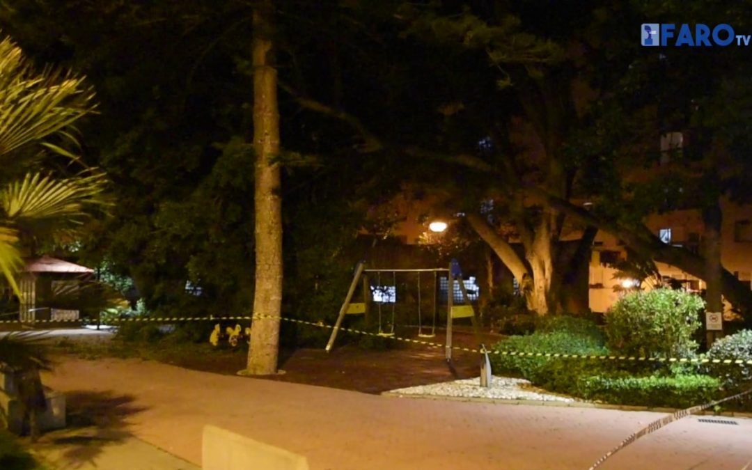 Clausurados los Jardines de la Argentina por la caída de un árbol